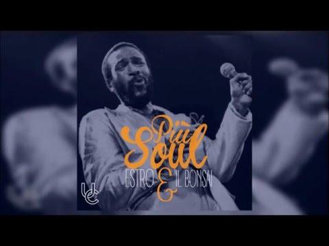 ESTRO & IL BONSAI - Più Soul