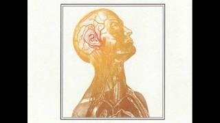 Hoppípolla - String Quartet Tribute To Sigur Ros - Vitamin String Quartet