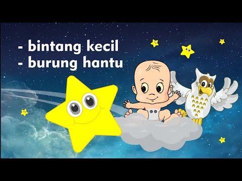 Lagu Bintang Kecil Dan Burung Hantu - Lagu Anak Indonesia Populer