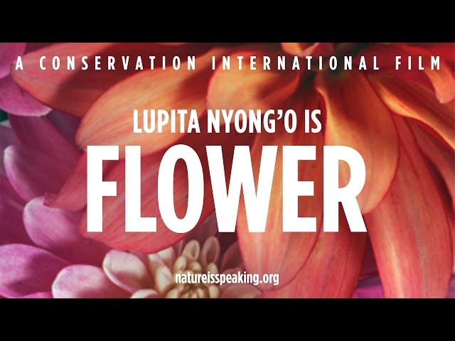 Nature Is Speaking – Lupita Nyong'o is Flower | Conservation International (CI)