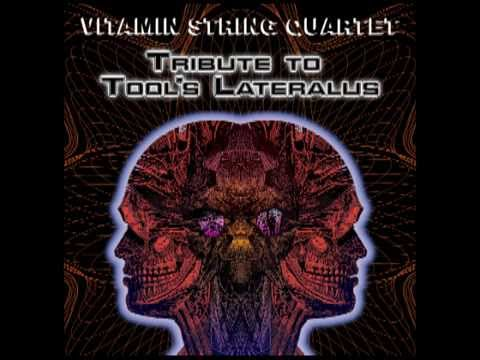 The Grudge (Tribute to Tool) -- Vitamin String Quartet Performs Tool's Lateralus