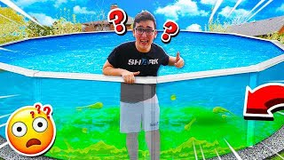 GUESS WHAT'S IN THE POOL CHALLENGE!