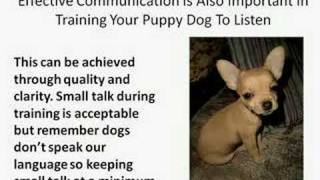 How To Train Your Puppy Dog To Listen