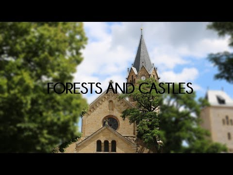 FORESTS AND CASTLES