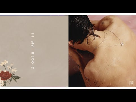 Shawn Mendes X Harry Styles   In My Blood X Sign Of The Times   MASHUP