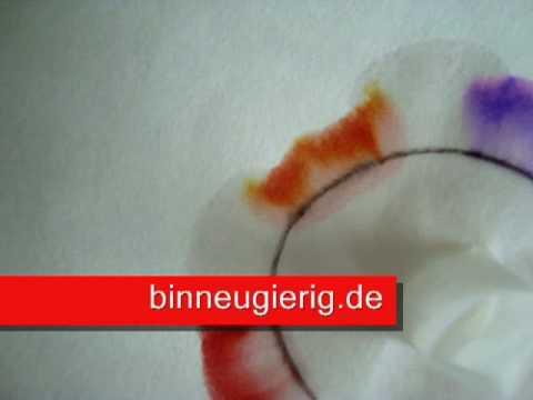 Filzschreiberwettrennen - Chromatographie Für Kinder