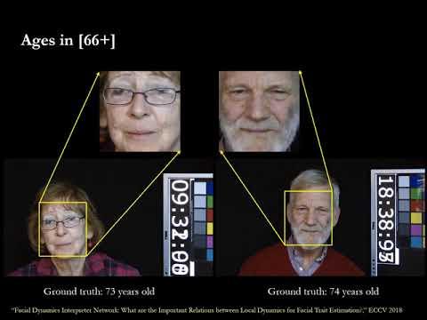Facial Dynamics Interpreter Network