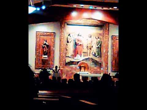 , audio 2/17/17  HOMILY EXCERPT, ST JOHN BAPTIST COSTA MESA