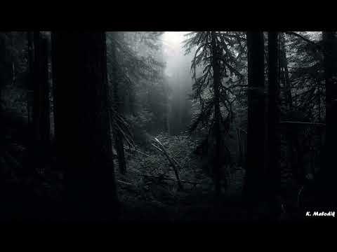 Jack Back (David Guetta) - Pelican (Original Mix)