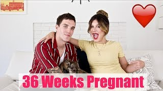 PREGNANCY VLOG - 36 WEEKS PREGNANT UPDATE | Shenae Grimes Beech & Josh Beech