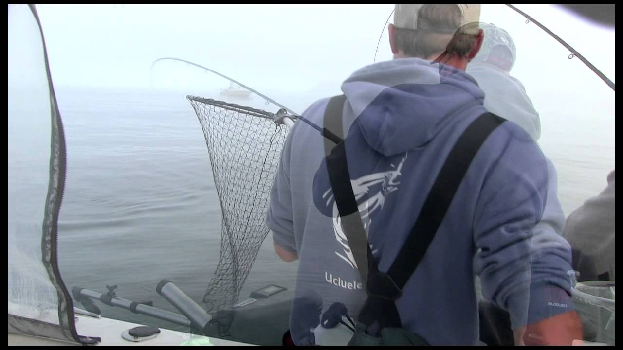 how to catch chinook salmon in bc