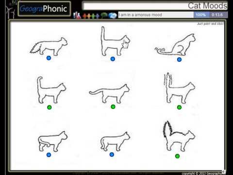 Stämningar av en katt kan kännas igen av sin svans. Tail ställningar av en katt.