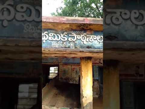 Andhra  pradesh, nellore district, doravari satram mandal, kattuvapalli village lo mpp school parist