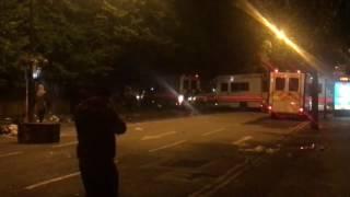 Столкновения с демонстрантами на акции протеста в Лондоне