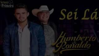 Humberto & Ronaldo - Sei lá (Lançamento 2019) (Música Nova)