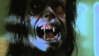 Gambar cover Cult Horror Movie Scene N°38 - The Howling (1981) - Werewolf Transformation