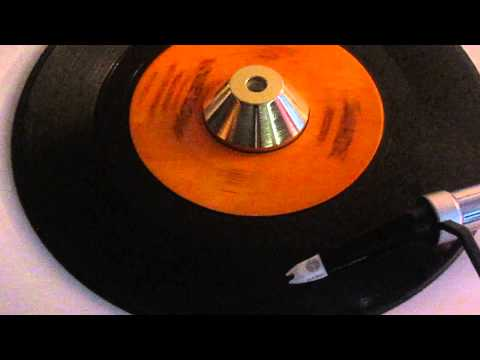 PAUL REVERE AND THE RAIDERS - LOUIE LOUIE  ( SANDE ) mp3
