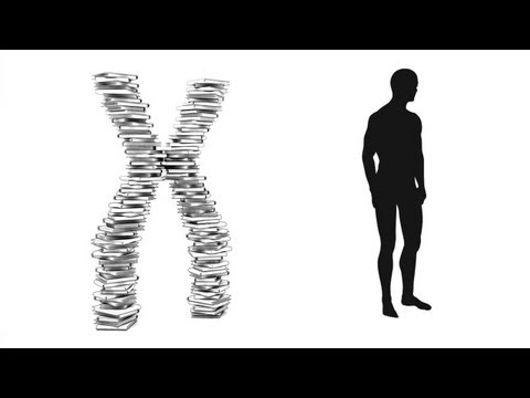Video image: The twisting tale of DNA - Judith Hauck