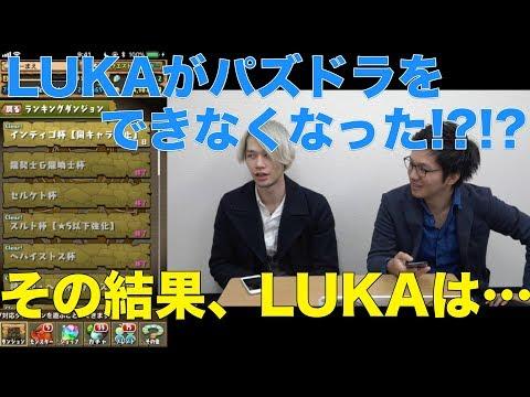 【パズドラ】ランキングダンジョン インディゴ杯【同キャラ禁止】だーまえ(LUKA)