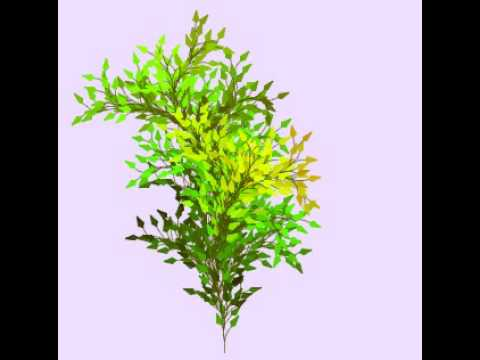 Procedurally Generated Plant