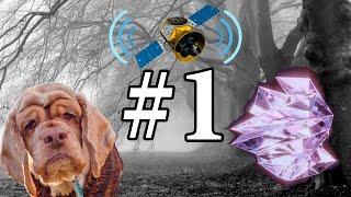 Собачий возраст, Космическое радио и Временные кристаллы. Новости Науки #1