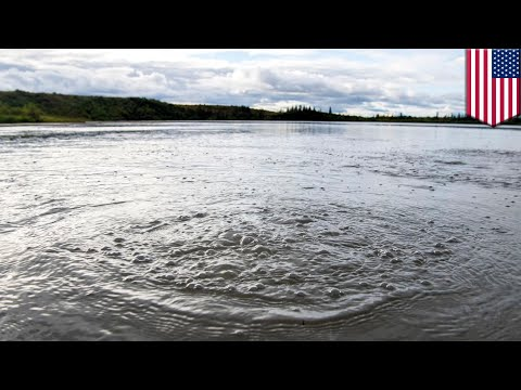 Global warming: Methane gas leaking from Alaskan lake - TomoNews