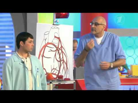 Ишемическая болезнь сердца. Почему «барахлит» мотор