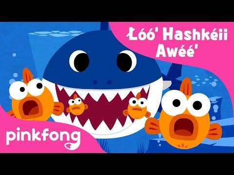 Łóó'-hashkéii-awéé'-|-baby-shark-navajo-|-navajo-nation-|-pinkfong-songs-for-children
