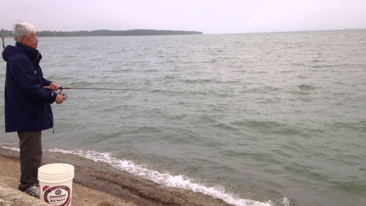 5 1 2013 whitebass fishing at ray roberts lake youtube for Lake ray roberts fishing report