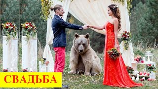 WEDDING in Russia / русская свадьба, традиции