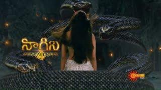 Nagini 4 - New Serial Promo | Upcoming Serial | Gemini TV Serial | Telugu Serial