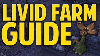 Runescape 3 - Livid Farm Guide 2014 - 19k Produce Points/Hour