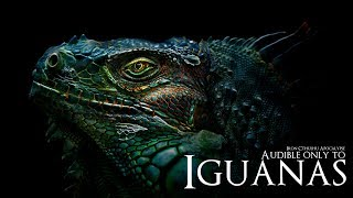 Audible Only to Iguanas (The Original Motion Picture Soundtrack - Dark Ambient Hour)
