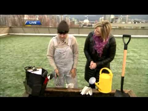 BT Vancouver: Spring Gardening Tips