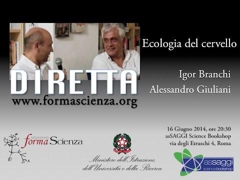 Caffè Scienza  - Ecologia del cervello - DIRETTA WEB