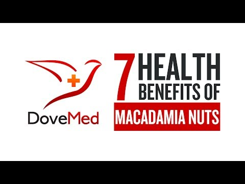 7 Health Benefits Of Macadamia Nuts