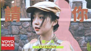 郁一凡《請你》官方動態歌詞MV (無損高音質)