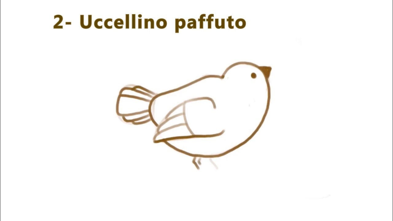 paffuto 53)