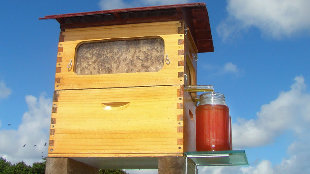New Invention - Flow: Honey on Tap Directly From your Beehive [2015]