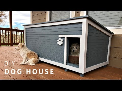 DIY Insulated Dog House Build
