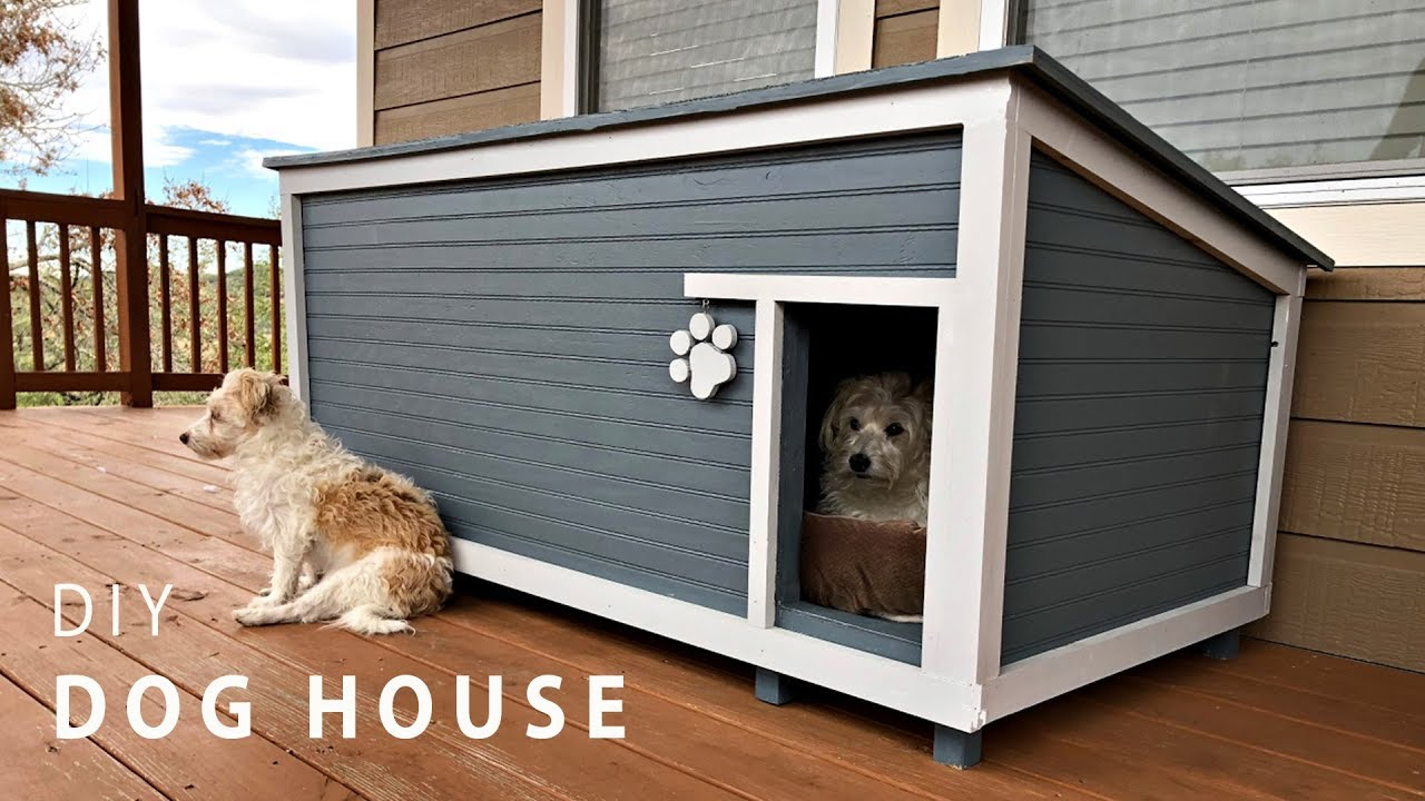 Diy Insulated Dog House Build Youtube