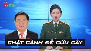 Xử tội Đinh La Thăng, Trịnh Xuân Thanh: Chặt cành để cứu cây