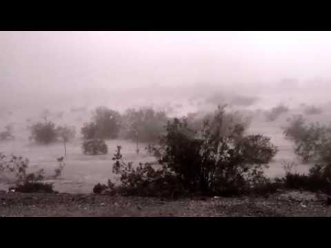 Slow Meadow - Absence