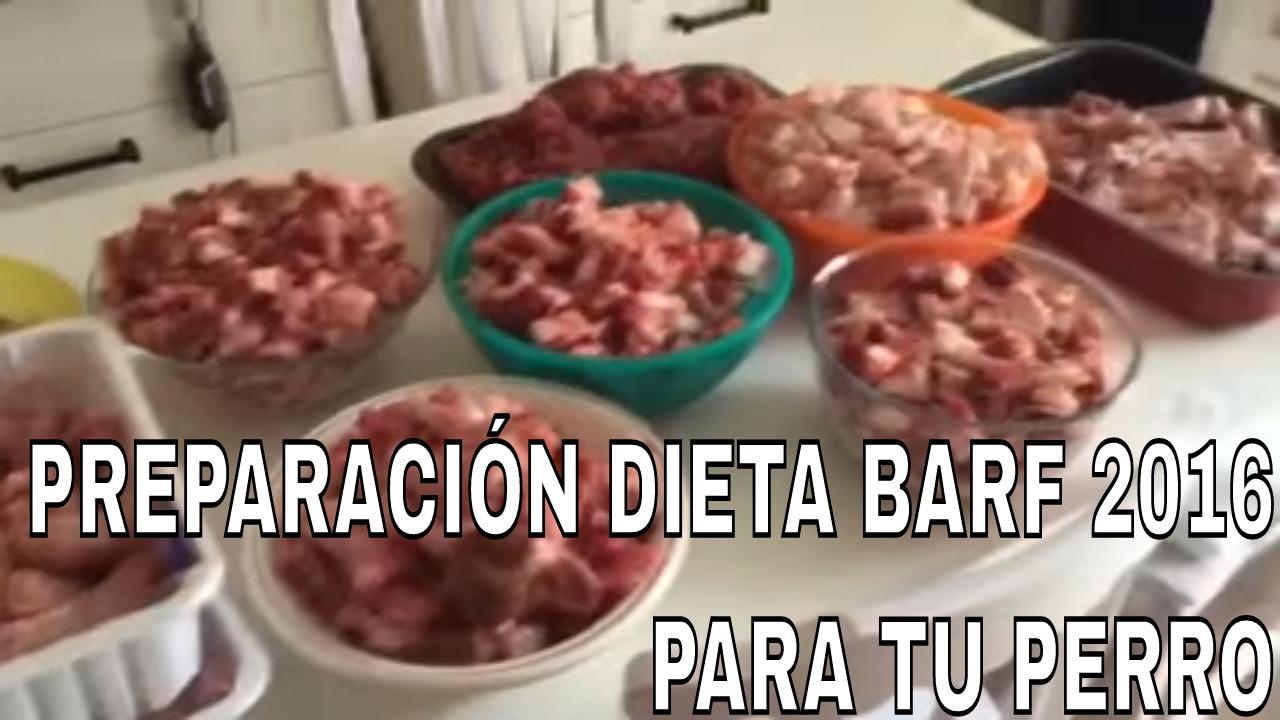 cual es la dieta barf