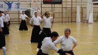Kyudo practice at Budapest seminar with sensei Matsuo Makinori.