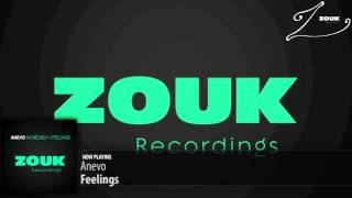 Anevo - Feelings (Original Mix)