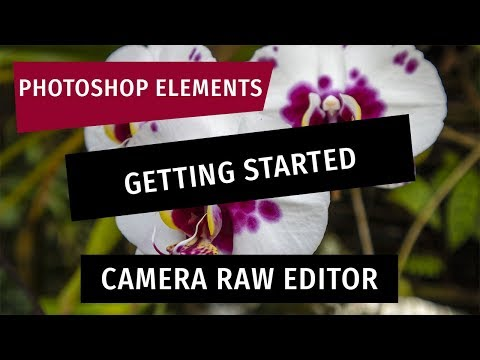 Photoshop Elements: Getting Started With The Camera RAW Editor