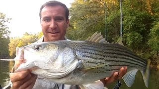 Striper Fishing Atlanta Georgia