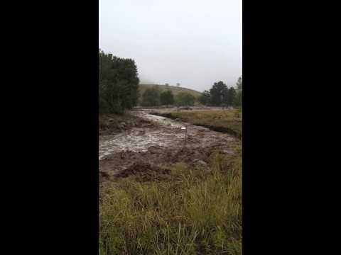Bobbing Fence Post - Flooded Boulder Open Space