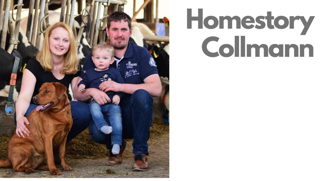 Download Homestory - Collmann